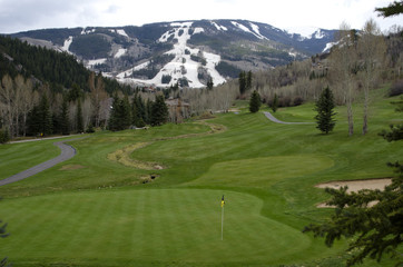 Beaver Creek Golf Course and Ski Slopes