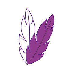 feathers icon over white background. vector illustration