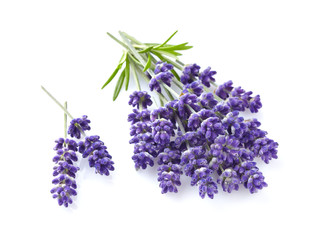 Lavender with leaves