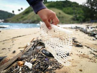 Volunteers clean beaches