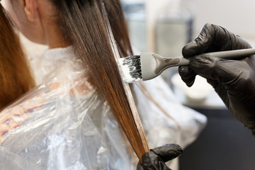 Professional hairdresser dyeing hair of her client