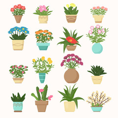Colorful vector illustration set of flowers and plants, succulent in vases in cartoon flat style.