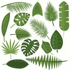 Vector illustration set of tropical green leaves of palm, jungle leaves, philodendron in cartoon flat style on white background.