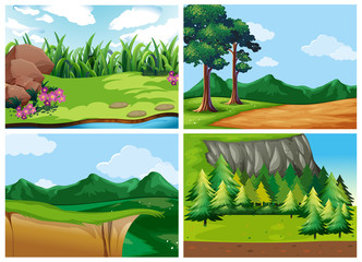 Four forest scenes at daytime