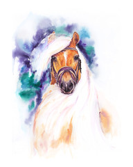 The red horse with a white mane. Original hand drawn watercolor illustration.