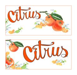 Design for leaflets citrus