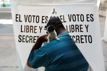 Man holds his dog while casting his ballot for governor of the State of Mexico, at a polling station in Texcoco