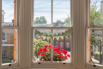 Interior of a Victorian British house with old wooden white windows  and red geranium flowers on the window sill facing a traditional English street