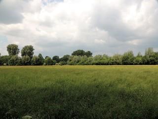 Niederrheinisches Auenland