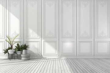 3d rendering empty white classic room with nice wall panel and plant and wood floor Wall mural