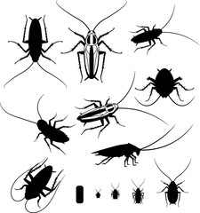 Set of silhouettes of cockroaches, vector EPS 10