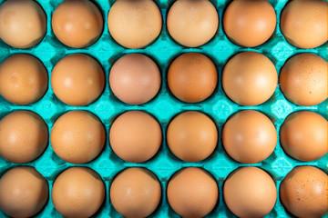 Fundo com ovos de galinha.