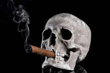 Close up portrait Skull with a cigar and smoke on black background. Health danger concept