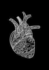 Zentangle stylized Human heart .