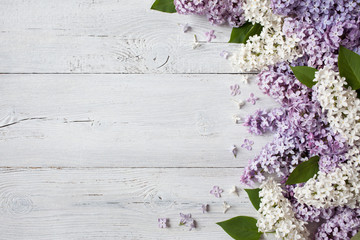 Photo sur Toile Lilac A wooden background with flowering lilac branches