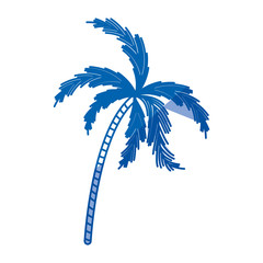 blue shading silhouette of palm tree vector illustration