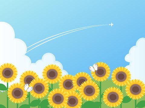ひまわり畑と夏の空のベクターイラスト