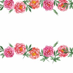Watercolor pnk peonies banner isolated on white background