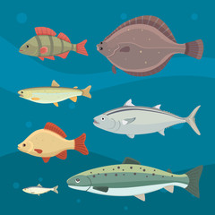 Isolated river fish. Set of freshwater sea cartoon fishes. Fauna ocean vector illustration