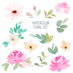 Watercolor floral set. Hand drawn illustration