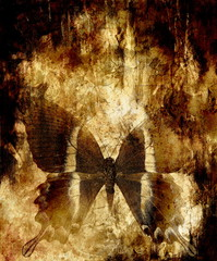 butterfly and abstract background. Old sepia effect.