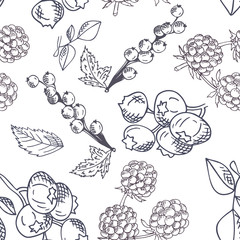 Vector seamless pattern with fruits. Blueberry, blackberry and currant background. Hand drawn elements