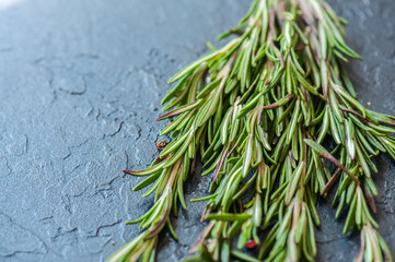 Close up of rosemary on a gray stone background. Cooking concept.