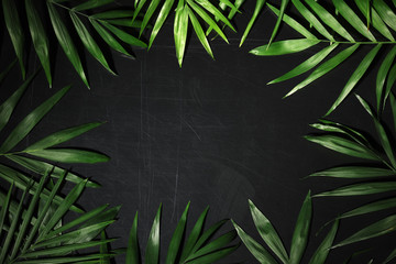 frame of palm leaves Wall mural