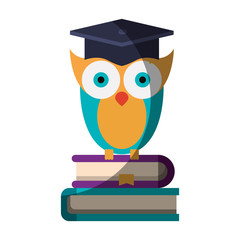 realistic colorful shading image of owl knowledge with cap graduation on stack of books vector illustration