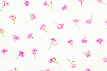 Pattern made of pink flowers on white background. Flat lay, top view. Summer flowers