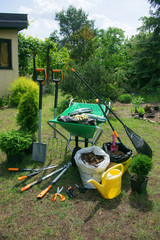 Fototapeta Work in the garden - planting plants