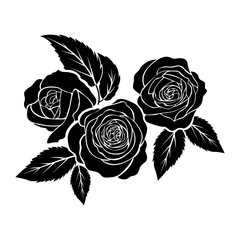 black roses illustration, tattoo on white background, isolated vector