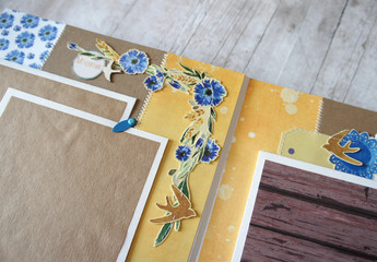 Details of authentic photoalbum with cornflowers