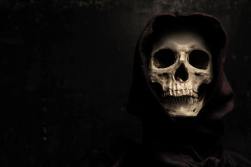 Still life art photography with skull