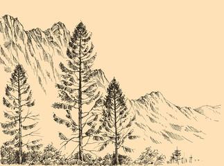 Alpine landscape vector drawing