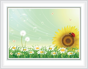 Greeting card with sunflower and daisies on an abstract background