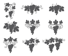 collection of grapes silhouette with bunches and leaves