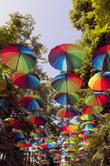 Rows of multicolored umbrellas