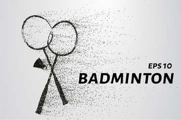 Badminton of particles. Badminton consists of small circles and dots. Vector illustration.