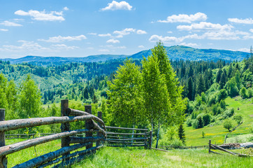 Background of Carpathian mountains landscape in Ukraine