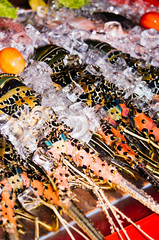 Fresh lobsters on restaurant display. Freshly catch of lobsters for gourmet tourism in Asia