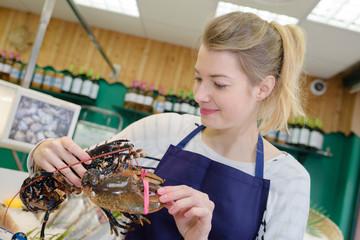 Fishmonger holding lobster