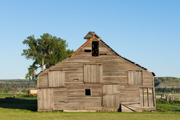 A dilapidated barn with weathered wood and a caved in roof with a grass field in the foreground and clear blue sky above.