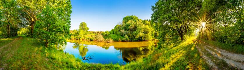 Landschaft im Sommer mit Fluss, Sonne, Weg und Wald
