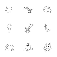 Set Of 9 Editable  Icons. Includes Symbols Such As Pelican, Ewe, Squid And More. Can Be Used For Web, Mobile, UI And Infographic Design.