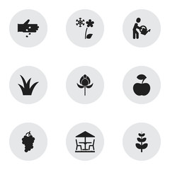Set Of 9 Editable Planting Icons. Includes Symbols Such As Frosts, Leaves, Tulip And More. Can Be Used For Web, Mobile, UI And Infographic Design.