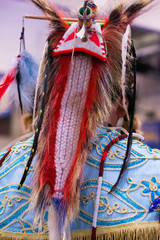 Headdress from the Back worn by a Native American man at a pow wow. The headdress has woven portions and is decorated with feathers.