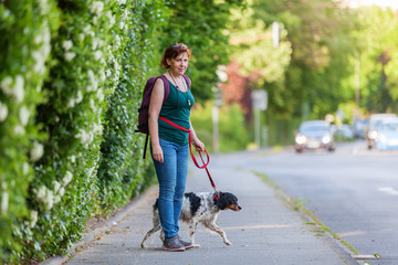 mature woman with Brittany dog on a sidewalk