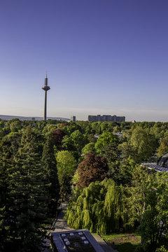 Blick über den Palmengarten und den Fernsehturm in Frankfurt am Main