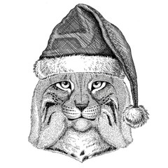 Wild cat Lynx Bobcat Trot wearing christmas hat New year eve Merry christmas and happy new year Zoo life Holidays celebration Hand drawn image